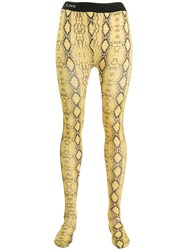 Laneus Snakeskin Print Leggings Yellow