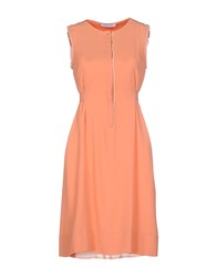 Caractere Dresses Knee Length Dresses Women Salmon Pink