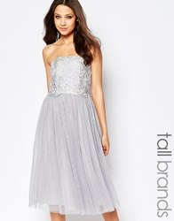 Little Mistress Tall Crochet Overlay Bandeau Midi Prom Dress Grey