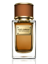Dolce And Gabbana Velvet Exotic Leather 1.6 Oz.