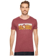 Mountain Khakis Rodeo Bison T Shirt Red Heather Men's T Shirt Pink