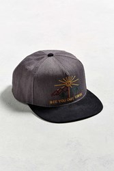 Katin Land Or Sea Baseball Hat Grey