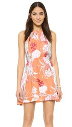Minkpink Backyard Bliss Halter Dress Multi