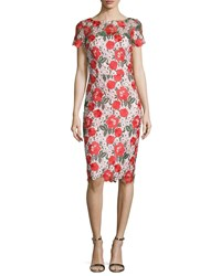 David Meister Floral Embroidered Lace Sheath Cocktail Dress Multi Color