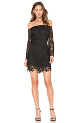Bardot Flora Lace Dress Black