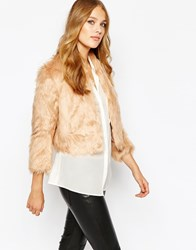 Bcbgeneration Cropped Faux Fur Jacket In Blush
