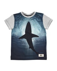 Molo Short Sleeve Swimming Shark Tee Blue Gray