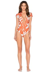 Adriana Degreas Balinese Print V Neck Swimsuit Rust