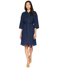 Ag Adriano Goldschmied Claudia Dress Falls Blue