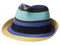 Etro Striped Straw Hat Blue Caps