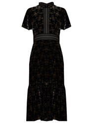 Rebecca Taylor Floral Print Velvet Dress Black Multi