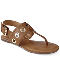 Tommy Hilfiger Lerry Flat Sandals Women's Shoes Brown