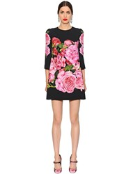 Dolce And Gabbana Roses Printed Cady Shift Dress