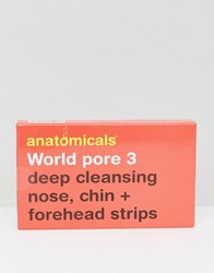 Anatomicals World Pore 3 Deep Cleansing Nose Chin And Forehead Strips World Pore Clear
