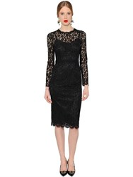 Dolce And Gabbana Cordonetto Lace Pencil Dress