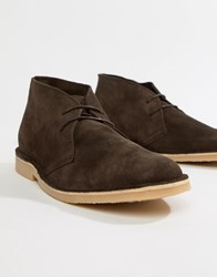 Pier One Desert Boots In Brown Suede