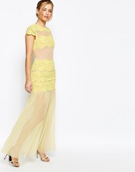 Jarlo Sheer Maxi Dress With Lace Panels Yellow