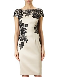 Adrianna Papell Cap Sleeve Cocktail Dress Champagne Black