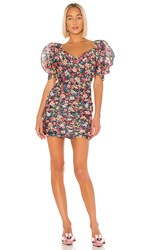 C Meo Collective And Ever More Dress In Pink. Black Garden Floral