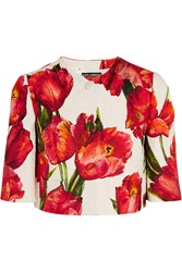 Dolce And Gabbana Cropped Floral Print Cotton Blend Matelasse Jacket Red