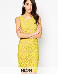 Max C London Max C Lace Body Conscious Dress Lime