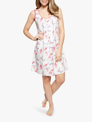 Cyberjammies Evie Hummingbird Chemise White Red