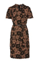 Paule Ka Floral Tweed Short Sleeve Dress Brown
