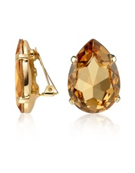A Z Collection Amber Tear Drop Clip On Earrings