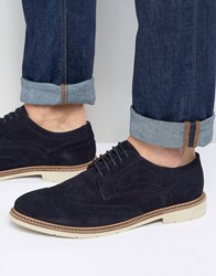 Tommy Hilfiger Metro Suede Brogue Shoes Navy