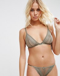 Asos Viola Linear Lace Triangle Bra Khaki Green