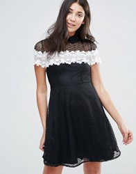 Jessica Wright Monochrome Lace Skater Dress Black