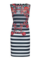 James Lakeland Stripe And Rose Print Sleeveless Dress Multi Coloured