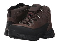 Skechers D'lite Sr Amasa Brown Crazy Horse Leather Women's Work Boots