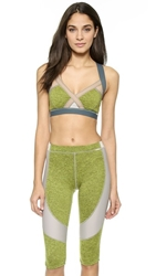 Vpl Insertion Bra Lemon Lime