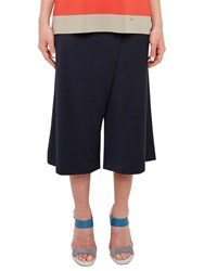 Ted Baker Colour By Numbers Rayon Crossover Culottes Navy