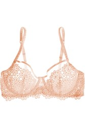 Mimi Holliday Puffin Guipure Lace Underwired Bra Orange