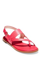 Cole Haan Anica Thong Sandal Teaberry L
