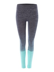Label Lab Ombre Seamfree Legging Mint