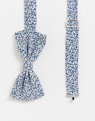 Penguin Original Ditsy Floral Bow Tie Blue