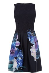 Oasis Photo Floral Lace Skater Multi Coloured Multi Coloured