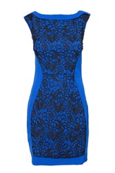 Indulgence Fitted Lace Panel Dress Blue