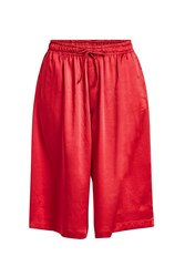 Y 3 Satin Shorts Red