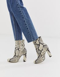 Call It Spring By Aldo Piellan Heeled Ankle Boots In Light Snake Print Multi