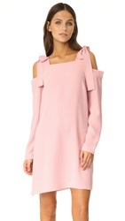 Amanda Uprichard Tie Dress Dusty Rose