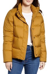 Patagonia Silent Water Repellent 700 Fill Power Down Insulated Jacket Kastanos Brown