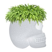 Qeeboo Mexico Led Outdoor Planter