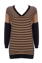 Wallis Petite Striped Panel V Neck Jumper Camel