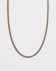 Icon Brand Curb Neck Chain In Gold