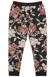 Mcq By Alexander Mcqueen Floral Print Cotton Jogging Trousers Black