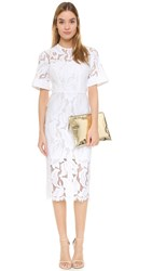 Lover Arizona Lace Fitted Dress White